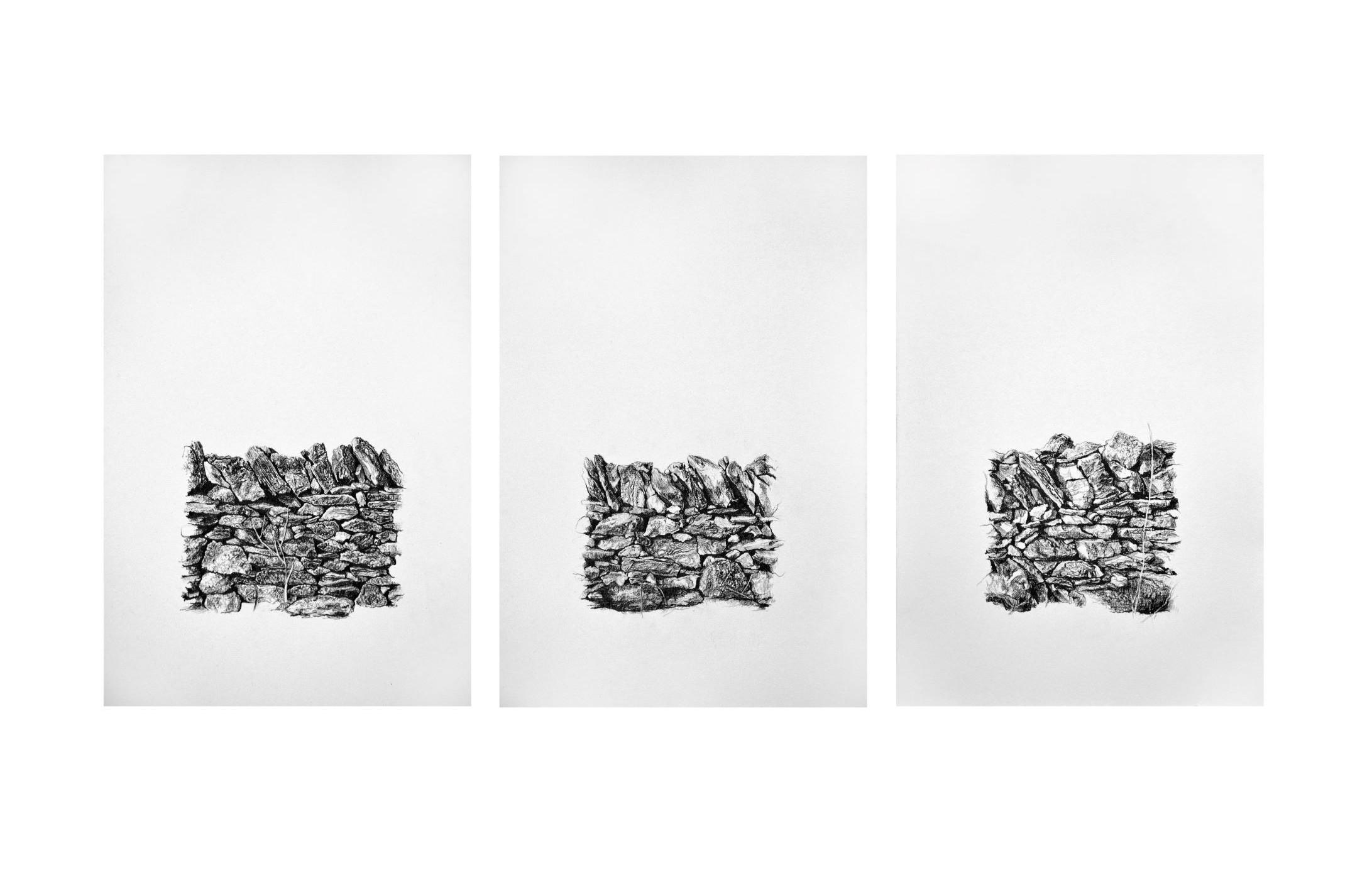 Xerolithia Triptych, drawings. Graphite on Arches Paper, by artist Neva Bergemann