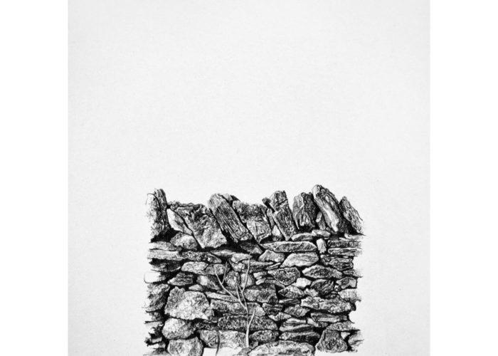 Xerolithia 1, drawing. Graphite on Arches Paper, by artist Neva Bergemann