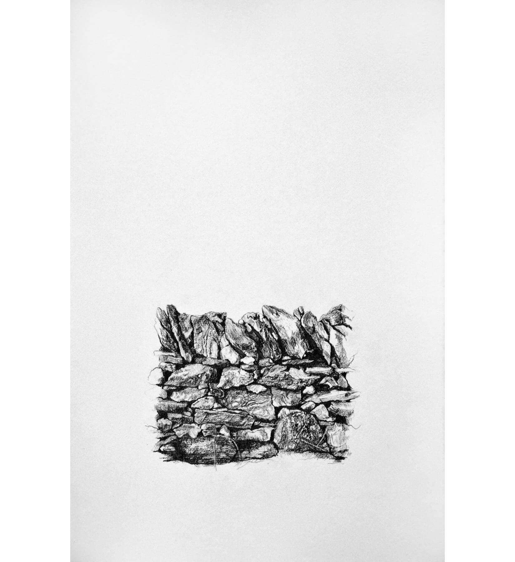 Xerolithia 2, drawing. Graphite on Arches Paper, by artist Neva Bergemann