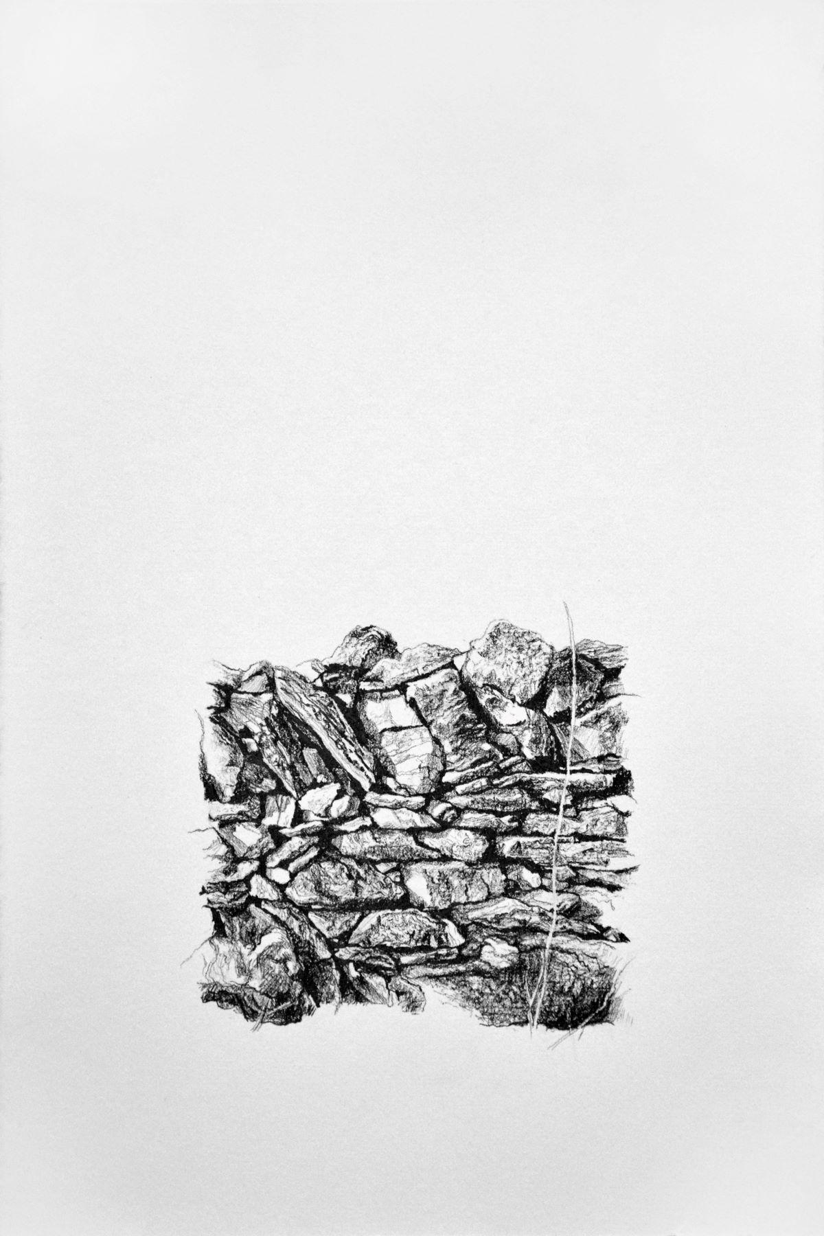Xerolithia 3, drawing. Graphite on Arches Paper, by artist Neva Bergemann